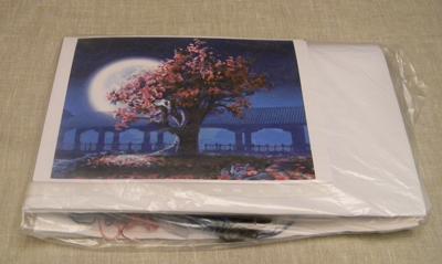 Упакованный набор для вышивки