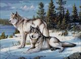 Вышивка крестом Волчье время
