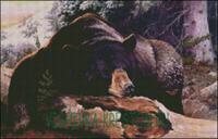 Вышивка крестом Медведь