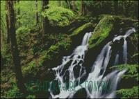 Вышивка крестом Лесной водопад