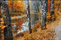 Вышивка крестом Золотая осень