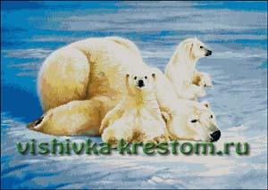Схема для вышивки крестом: Белые медведи