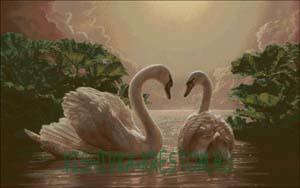 Схема для вышивки крестом: Два лебедя