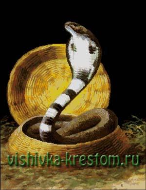 Вышивка крестом Королевская кобра