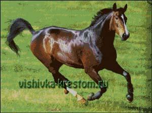 Схема для вышивки крестом: Конь