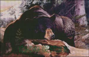 Схема для вышивки крестом: Медведь