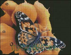 Вышивка крестом Бабочка на цветке