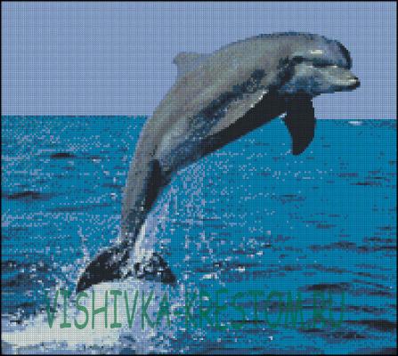 Схема дельфина вышивка